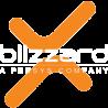 Blizzard-survival